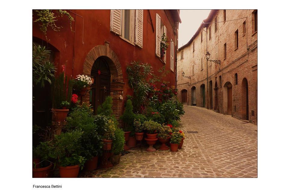 Francesca Bettini Menzione giuria Nel mio giardino 2017 Cattolica