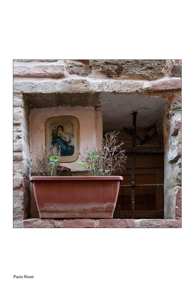 Paolo Giommi di Pesaro primo classificato Nel mio giardino 2017 Cattolica
